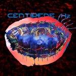 centipedehzanimalcollective