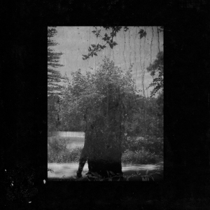Album art for Ruins