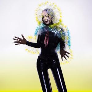 Album art for Vulnicura