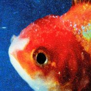 Vince-Staples-Big-Fish-Theory.jpg